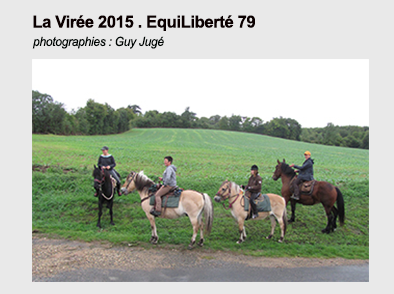 Pave lien viree 2015 guy